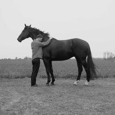 A horse savvy man