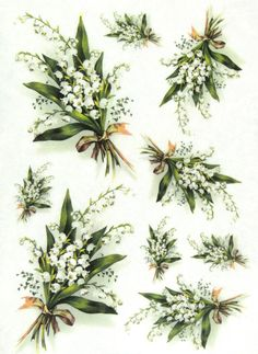 Lily Of The Valley Flower Assortment Floral Rice Paper For Decoupage Scrapbooking Paper Crafts Jo Decoupage Tissue Paper, Tissue Paper Crafts, Decoupage Glass, Decoupage Art, Scrapbook Paper Crafts, Scrapbooking, Lily Of The Valley Flowers, Decoupage Printables, Image 3d