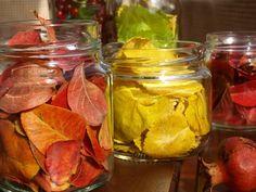 καρυδότσουφλο : Κλείσαμε λίγο φθινόπωρο μέσα σε μερικά γυάλινα βάζ...