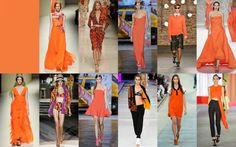 【The colors of 2014】Celosia orange. #fashion #clothing