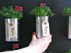 Temperos sempre frescos fazem uma baita diferença na comida. Que tal ter a sua própria hortinha em casa? Basta algumas latas de leite em pó e mãos à obra. - Veja mais em: http://www.vilamulher.com.br/artesanato/passo-a-passo/horta-em-casa-com-latas-de-aluminio-17-1-7886495-433.html?pinterest-mat