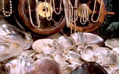 Tennessee River Freshwater Pearl Museum, Farm, Tour & Jewelry Showroom | Tennessee Vacation