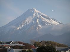 #1 place i need to go: New Zealand