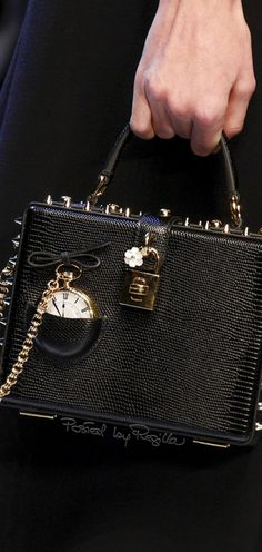 Regilla ⚜ Dolce  Gabbana, Fall 2016 handbags wallets - http://amzn.to/2ha3MFe