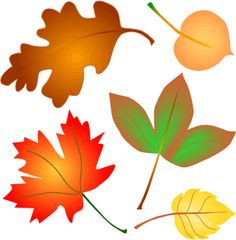 Image detail for -Autumn leaves clip art - free graphic from fall clip art collection