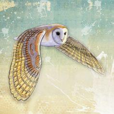 Barn Owl Labyrinth Art Print