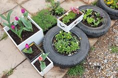 정원꾸미기,마당꾸미기,페타이어,재활용,리폼,리사이클링,업사이클링,꽃심기