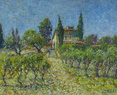 Les vignes du Domaine Souviou
