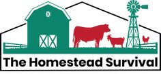 The Best of 2013 Food Storage Articles - Huge List - The Homestead Survival Penny Table Tops, Owl Knitting Pattern, Homemade Febreze, How To Make Homemade, Homemade Tea, Blue Jean Quilts, Heal Cavities, Homestead Survival, Vintage Recipes
