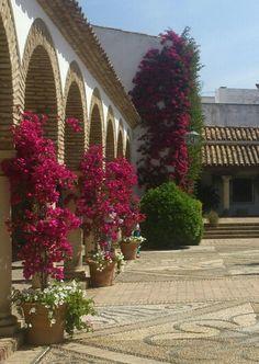 Interior del Palacio de Viana