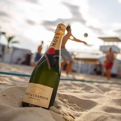 """""""TBT to warm days and cold champagne. Moët Impérial to be exact."""" Photo taken by @moetusa on Instagram, pinned via the InstaPin iOS App! http://www.instapinapp.com (10/15/2015)"""