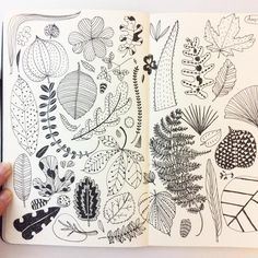 いいね!820件、コメント18件 ― Heegyum Kimさん(@hee_cookingdiary)のInstagramアカウント: 「Day 4, Leaves. Midnight drawing..sleepy... #CBDrawADay #creativebug #drawing #sketchbook…」