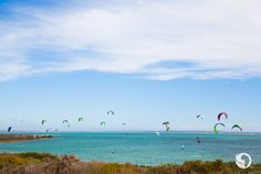Go Kite Surfing: Our action man knows a thing or two about kite surfing, so we headed up the west coast to Langebaan an easy one-hour drive from Cape T. Great White Attack, Marine Reserves, South Tyrol, Seaside Towns, Kitesurfing, Surf Art, Big Waves, Continents, Great Britain