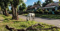 El pueblo fantasma más dulce de Cuba (+Fotos)