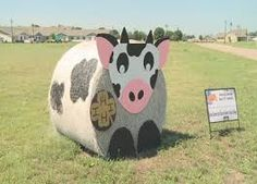 Image result for texas state fair hay bale contest