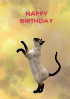 Siamese Cat And Fathers Day Greeting Card Birthday Happy Cards
