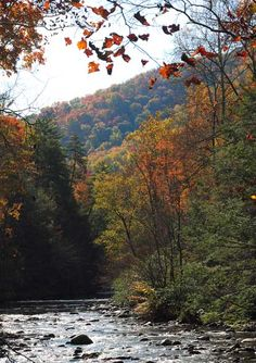 The Great Smokey Mountains in the Fall...