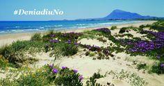 #DeniadiuNo Valencia, Costa, Mountains, Beach, Water, Alicante, Travel, Outdoor, Cities