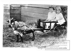Goat Cart: Mae and Lynette Jarvis. Photo circa 1930: Henrietta, Texas.