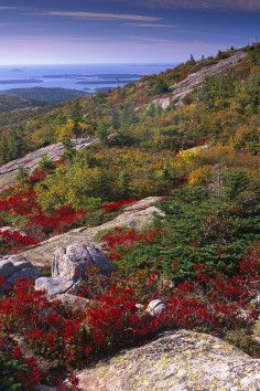 Cadillac Mountain Travel Vacation Ideas Road Trip Places to Visit Acadia National Park ME Monument Natural Feature Hiking Area Scenic Point Acadia National Park, National Parks, Rhode Island, Vermont, Places To Travel, Places To See, Nature Sauvage, Mount Desert Island, Antibes