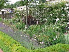 Bauerngarten Tünsdorf - Flip van den Elshout - Picasa Webalbums