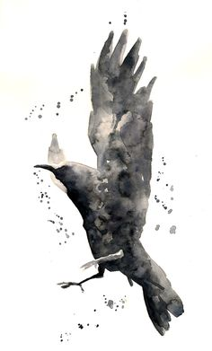 crow/raven tattoos | Black Bird Watercolor Tattoo Watercolor Raven Crows Ravens Blackbirds ...