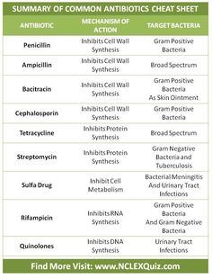 Common Antibiotics