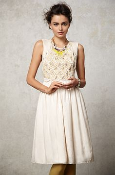 Shiya Embroidered Dress from Anthropologie - Dinner Rehearsal
