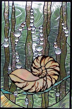 Nautilus stained glass window - a thing of beauty #sea #ocean #beach