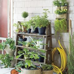 diy plant garden stand - Google Search