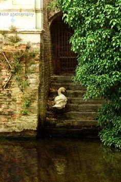 | ? | Canal entrance - Bruges | by © kelsk