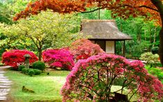 lovely zen garden landscape design with beautiful flower in courtyard also small house chinese style Japanese Garden Design, Garden Landscape Design, Japanese Gardens, Swimming Pool Landscaping, Garden Landscaping, Landscaping Ideas, Garden Wallpaper, Asian Garden, Colorful Plants