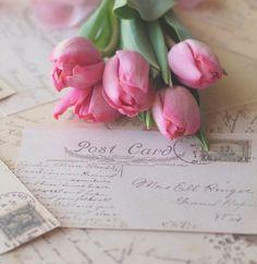 "princesspastelrose: ""Image via samanthaserena WHI http://weheartit.com """