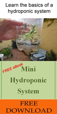 This DIY project will teach you the basics about hydroponic systems. From here you can design bigger systems & grow larger quantities of sprouts and even veg!