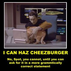 Star Trek lol cats oh Data. Klingon Language, Star Wars, Star Trek Meme, Starship Enterprise, Star Trek Universe, Nerd Love, Geek Out, I Laughed, Funny Cats