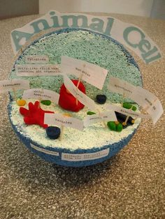Animal Cell Model created with a Styrofoam ball and clay Plant Cell Project, Cell Model Project, Animal Cell Project, Science Fair Projects, School Projects, Projects For Kids, Project Ideas, School Ideas, 3d Animal Cell Model