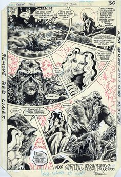 Original page by Rick Veitch (pencils) and John Totleben (inks) from Swamp Thing published by DC Comics, June Comic Book Pages, Comic Books Art, Comic Art, Swamp Thing Dc Comics, Artist Pencils, Bristol Board, Comic Drawing, Comic Panels, Manga Pages