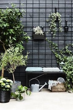 I like the use of black metal grids attached to a black fence . - I like the use of black metal grids attached to a black fence to train and hold … – # fixed - backyard design diy ideas Black Garden Fence, Black Fence, Green Fence, Potager Garden, Terrace Garden, Garden Table, Back Gardens, Outdoor Gardens, Small Terrace