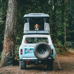 """Modern Outdoors on Instagram: """"Best rigs, equipped with the finest tents, with a man's best friend. Not bad @fursty, thank you for sharing with us. #modernoutdoors"""""""