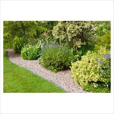 Gravel pathway alongside lawn and flowerbed in suburban garden
