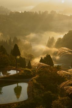The splendor of Japanese countryside! Yamakoshi village, Niigata, Japan