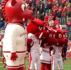 Going *HOG WILD* over those Razorbacks. Woooo Pig Soooie! :)