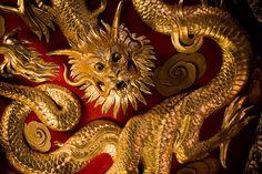 The Yellow Dragon represents center. Its element is soil/earth Dragon King, Dragon Art, Animal Spirit Guides, Spirit Animal, Frog Fractions, Imperial Dragon, Yellow Dragon, Gold Dragon, Chinese Mythology