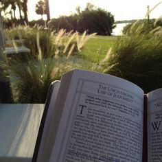 Devotions on my back patio during sunrise at Club Med Sandpiper Bay