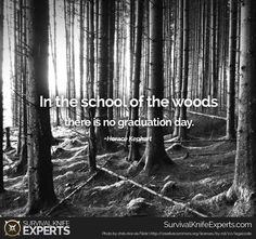 """""""In the school of the woods there is no graduation day. Survival Knife, Survival Gear, Survival Skills, Best Camping Gear, Graduation Day, Survival Quotes, Bushcraft, Qoutes, Motivational Quotes"""