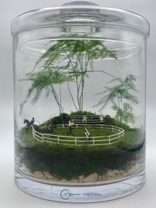 Terrario de musgo vivo en bote de cristal de diámetro 20 cm de base y 25 cm de altura con tapa. Todos los productos utilizados son naturales , salvo los muñecos. En la hípica , entrenando saltos. El salto es la capacidad del caballo y del jinete de saltar de manera sincronizada sobre una serie de obstáculos, en un orden dado. Dado, Natural, Home Decor, Moss Terrarium, Terrariums, Glass Boat, Mini Gardens, Unique Gifts, Canisters