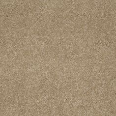 STAINMASTER Active Family Supreme Delight Trail Textured Interior Carpet Static Shock, Urine Stains, Textured Carpet, Carpet Samples, Pet Urine, Gold Face, Supreme, Interior, Life