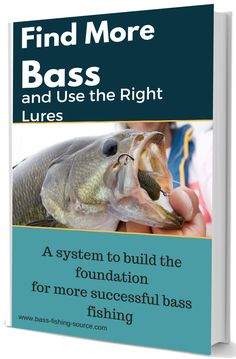 Bass Fishing from the source. Tips to find more bass and know which bass lures to use Australian Bass, Bait Caster, Bass Fishing Lures, Catfish Fishing, Fishing Times, Spinner Bait, Bass Boat, Largemouth Bass, Fishing Equipment