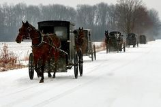 Amish - Not sure if this is PA or Ohio, but certainly a scene you would see on country roads in winter. Snow Scenes, Winter Scenes, Black Butler, Amish Pie, Amish Family, Amish Culture, Amish Community, Amish Country, Watercolor Paintings