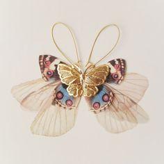 Golden Wings Fluttery Cluster Long Butterflies Earring by jewelera